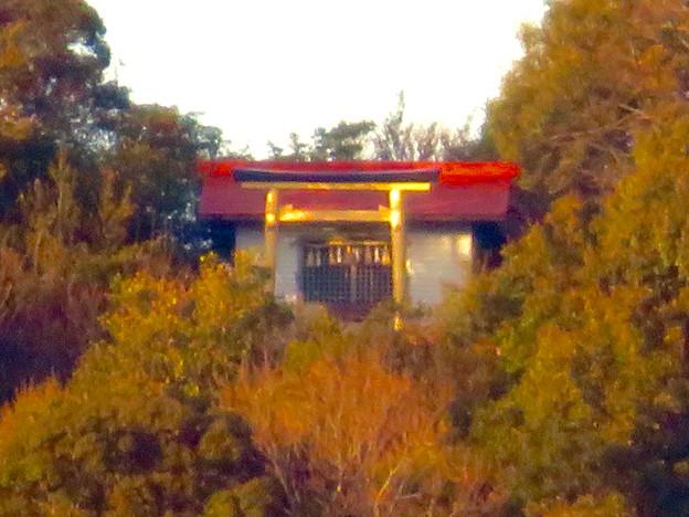 Photos: 真下から見上げた尾張白山社 - 5