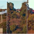 Photos: 真下から見上げた尾張白山社 - 7