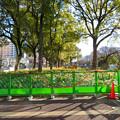 Photos: 再整備工事中で封鎖されてた久屋大通公園(2019年1月27日) - 10