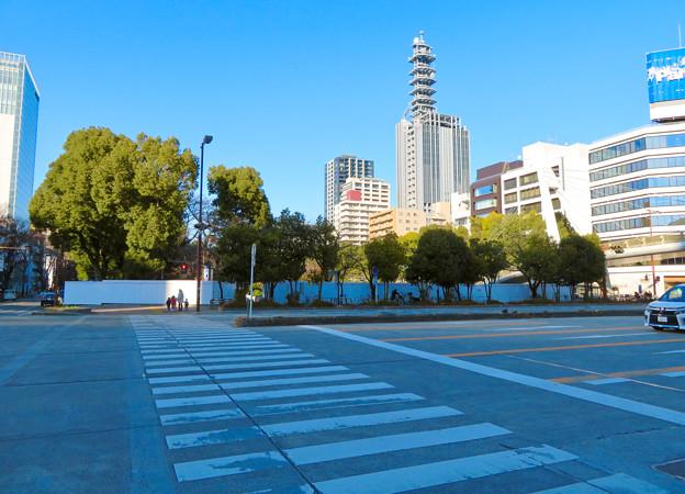 再整備工事中で封鎖されてた久屋大通公園(2019年1月27日) - 22