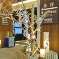 Photos: 万松寺:お経の文字が浮かび上がったような装飾 - 1