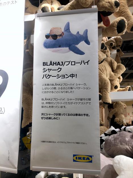 話題のIKEAのサメ、現在バケーション中?ww - 1