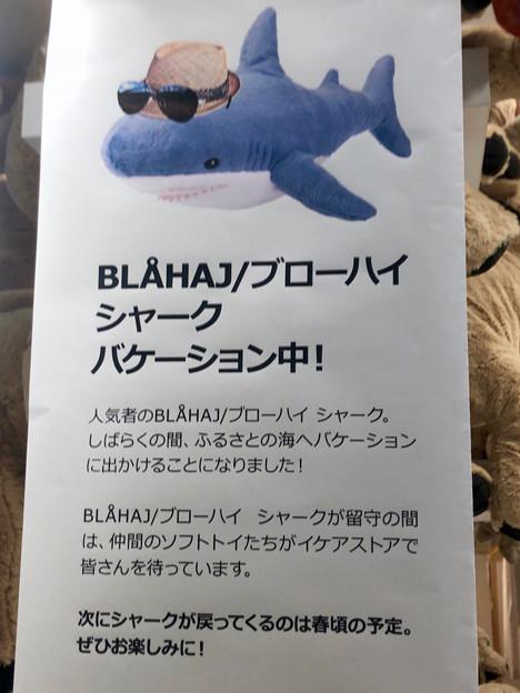 話題のIKEAのサメ、現在バケーション中?ww - 2
