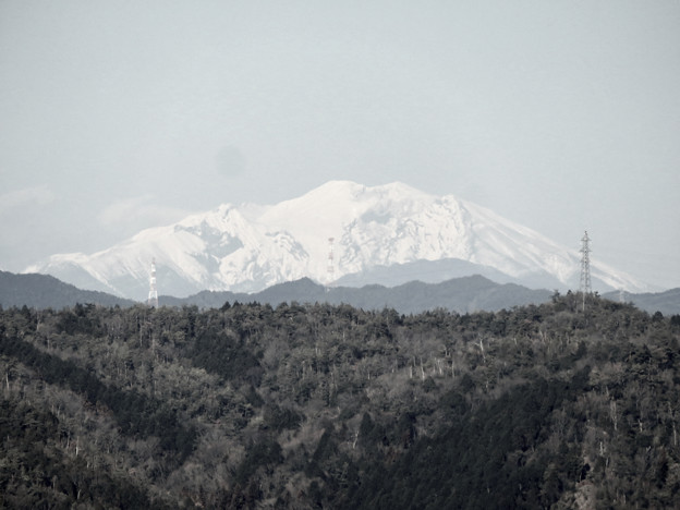 花フェスタ記念公園:花のタワーの展望階から見た景色 - 16(雪を頂く御嶽山と乗鞍岳、モノクロ)