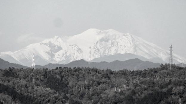花フェスタ記念公園:花のタワーの展望階から見た景色 - 17(雪を頂く御嶽山と乗鞍岳、モノクロ)