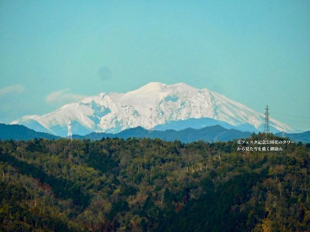 花フェスタ記念公園:花のタワーの展望階から見た景色 - 22(雪を頂く御嶽山と乗鞍岳)
