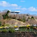 Photos: 花フェスタ記念公園:園外から見た花のタワー