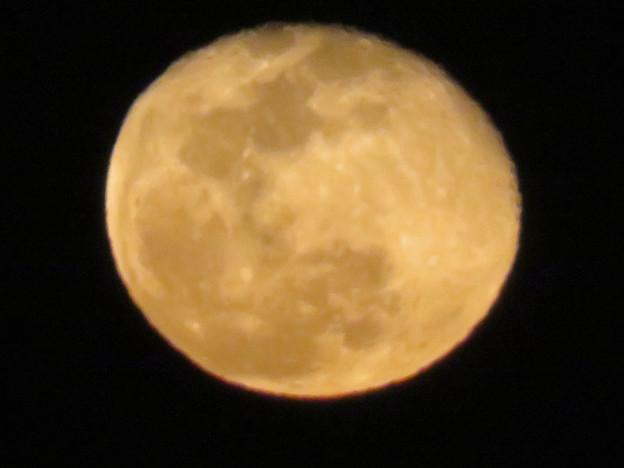 昇ったばかりの大きな月 - 3