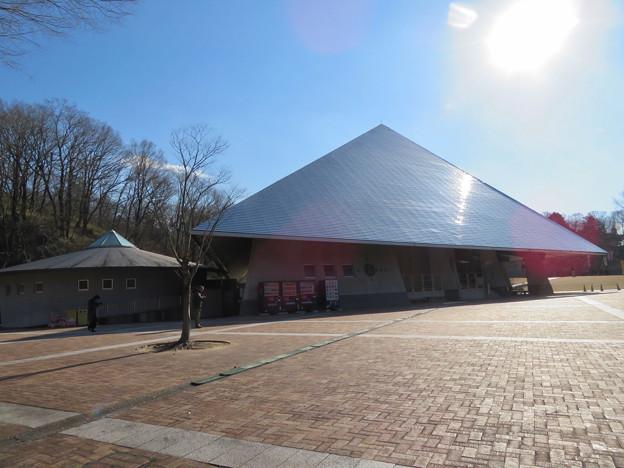 花フェスタ記念公園:イベントスペース「プリンセスホール雅」 - 7
