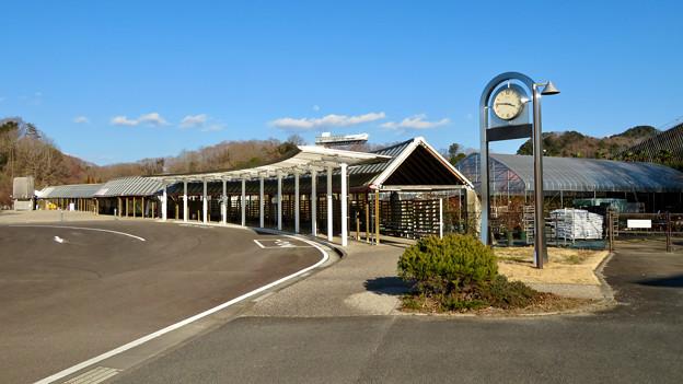 オフシーズン(2月)の花フェスタ記念公園 - 4:バス停