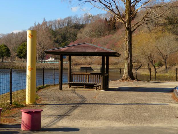 オフシーズン(2月)の花フェスタ記念公園 - 50:北洞ため池沿い