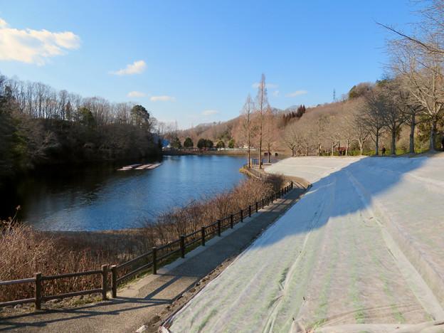 オフシーズン(2月)の花フェスタ記念公園 - 51:北洞ため池沿い