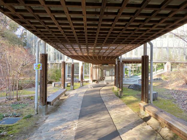 オフシーズン(2月)の花フェスタ記念公園 - 54