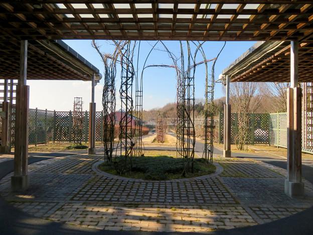 オフシーズン(2月)の花フェスタ記念公園 - 68:ロイヤルローズガーデン
