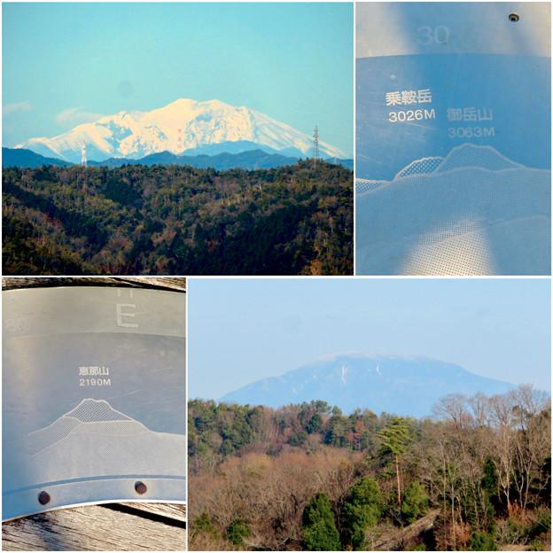 花フェスタ記念公園:花のタワーから見た御嶽山と乗鞍岳、恵那山