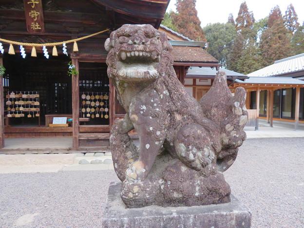 子守神社 - 16:狛犬