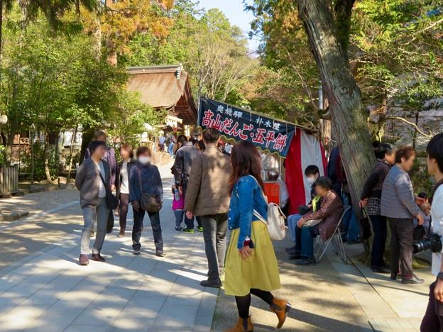 梅が満開だった大縣神社 2019 - 3
