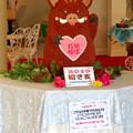Photos: お菓子の城 No - 21:今年の干支のイノシシ