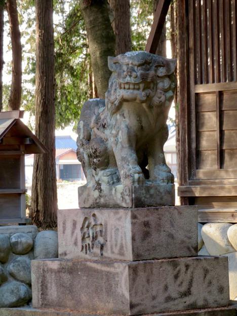 鳴海杻(なるみてがし)神社 - 25:狛犬