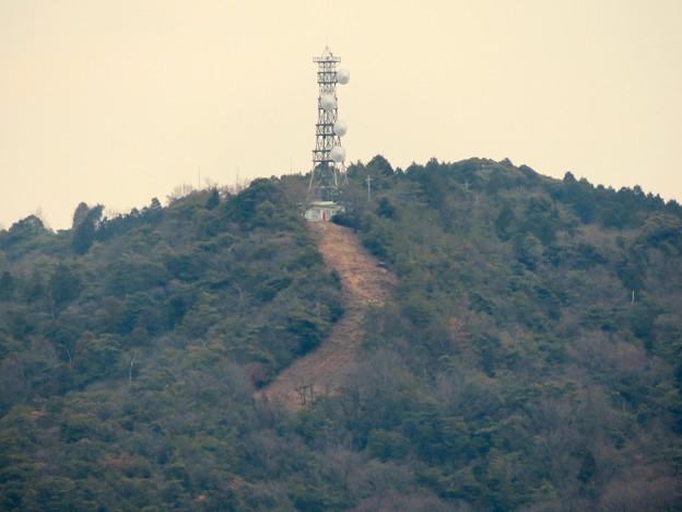 円福寺の展望台から見た高座山の頂上部 - 2