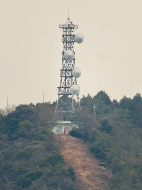 円福寺の展望台から見た高座山の頂上部 - 3