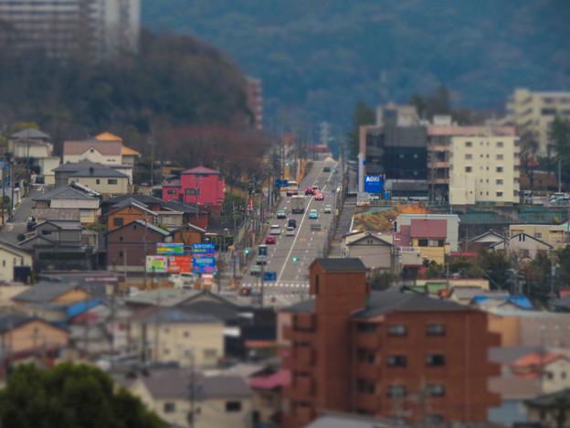円福寺の展望台から見た高蔵寺ニュータウンへと続く坂道 - 4:ミニチュアライズ