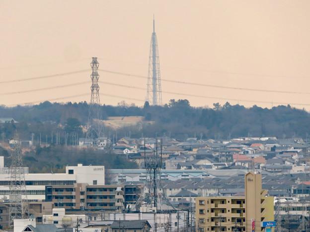 円福寺の展望台から見た瀬戸デジタルタワー - 1