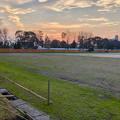Photos: 整備工事中の朝宮公園のグランド(2019年3月22日) - 3
