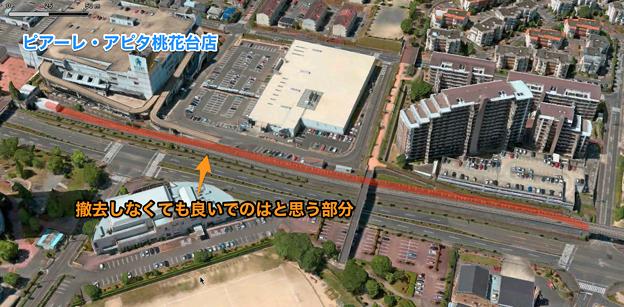 桃花台線の撤去しなくても良いのではと思う部分 - 2:県道195号沿い