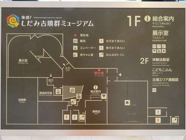 しだみ古墳群ミュージアム「SHIDAMU(しだみゅー)」No - 9:建物の案内図