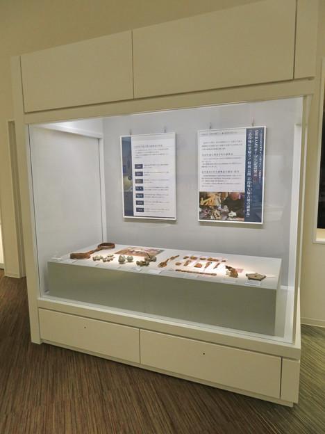 しだみ古墳群ミュージアム「SHIDAMU(しだみゅー)」展示室 No- 58:志段味大塚古墳から出土した装飾品