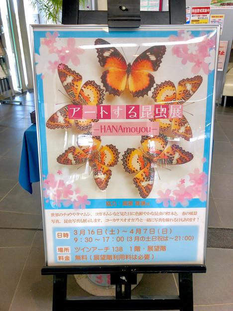 ツインアーチ138:アートする昆虫展 No - 1