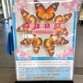 Photos: ツインアーチ138:アートする昆虫展 No - 1