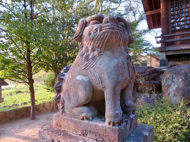 河田城跡にある?河田神明社 - 7:狛犬