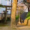 Photos: 黒岩石刀神社 - 19