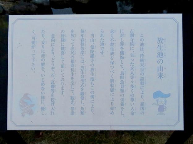 シーズンオフの曼陀羅寺公園 - 13:放生池の由来