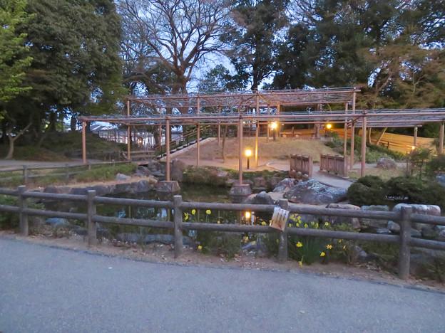 シーズンオフの曼陀羅寺公園 - 14:放生池