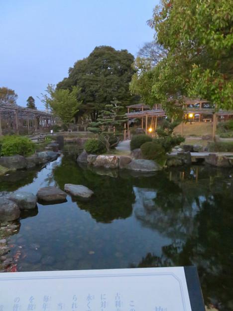 シーズンオフの曼陀羅寺公園 - 15:放生池