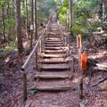 Photos: 東谷山:中社古墳と南社古墳の間の急な階段 - 3
