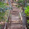 Photos: 東谷山:中社古墳と南社古墳の間の急な階段 - 4