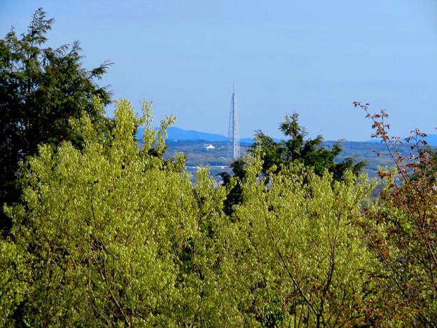 尾張戸神社の展望デッキから見た瀬戸方面の景色 - 2:瀬戸デジタルタワー