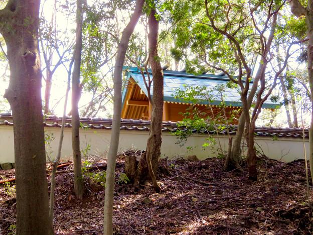 尾張戸神社古墳 - 7:古墳の上にある神社本殿