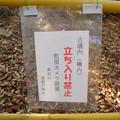 Photos: 尾張戸神社古墳 - 9:立入禁止の張り紙