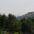 Photos: 春日井市都市緑化公園近くから見えた名駅ビル群 - 1