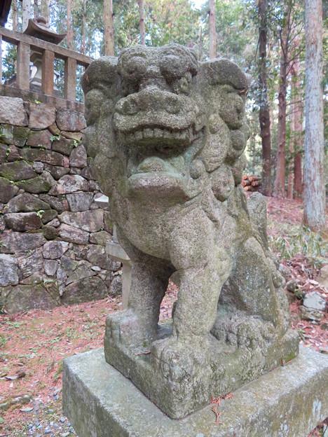 岩船神社 - 20:狛犬