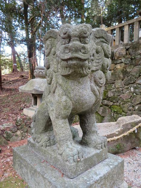 岩船神社 - 21:狛犬