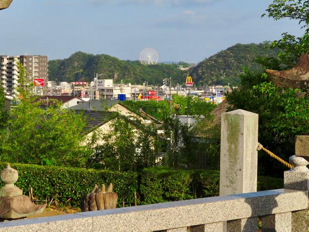 鵜沼宿にある二ノ宮神社 No - 16:境内から見えたモンキーパークの観覧車