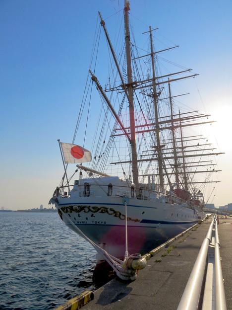 ガーデンふ頭に停泊して帆船「日本丸」 - 19