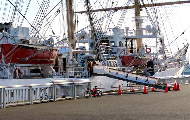 ガーデンふ頭に停泊して帆船「日本丸」 - 22