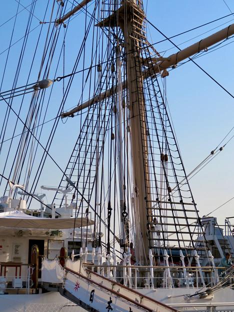 ガーデンふ頭に停泊して帆船「日本丸」 - 24